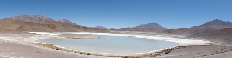 Altiplano en Bolivie.jpg